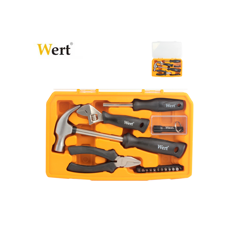 Tool Set in plastic case, 17 Pcs / Wert 2191 /
